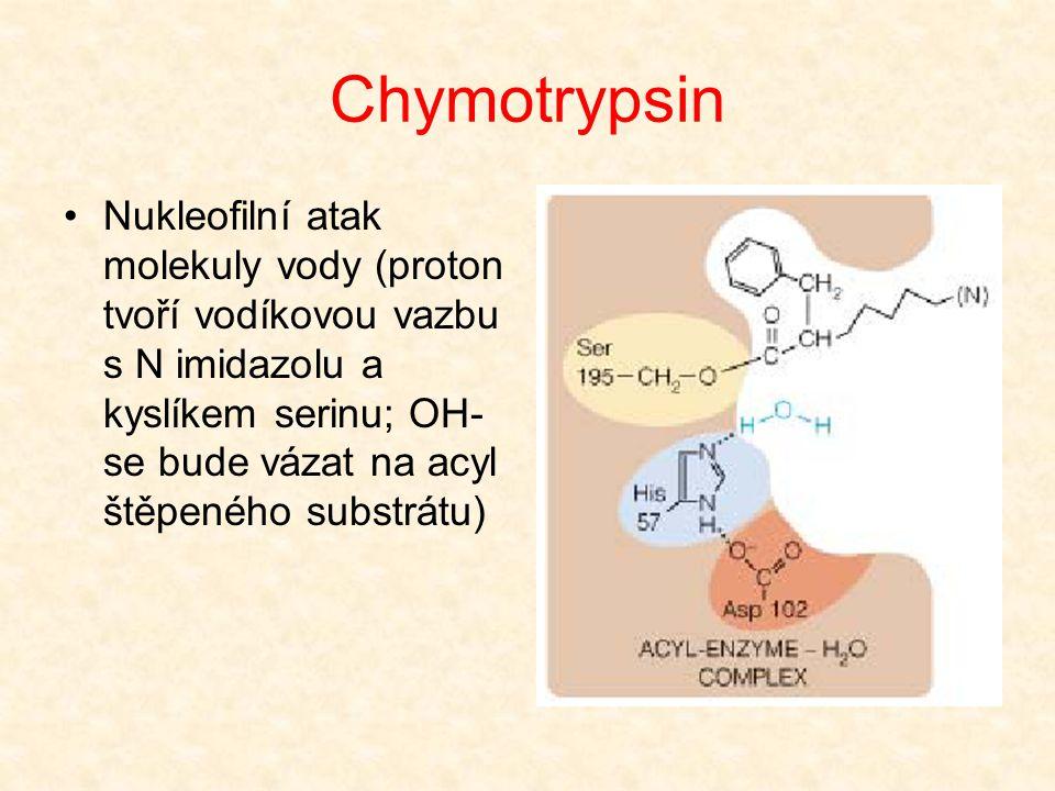 Chymotrypsin Přenos protonu z N atomu imidazolu na N atom substrátu (kyselá katalýza) Štěpení C-N vazby a uvolnění prvého reakčního produktu Zbývající
