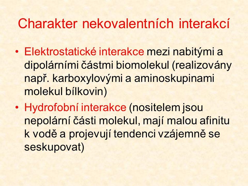 Charakter nekovalentních interakcí Vodíkové vazby (atom vodíku vázán na silně elektronegativní atom kyslíku nebo dusíku  polarizace vazby  positivní