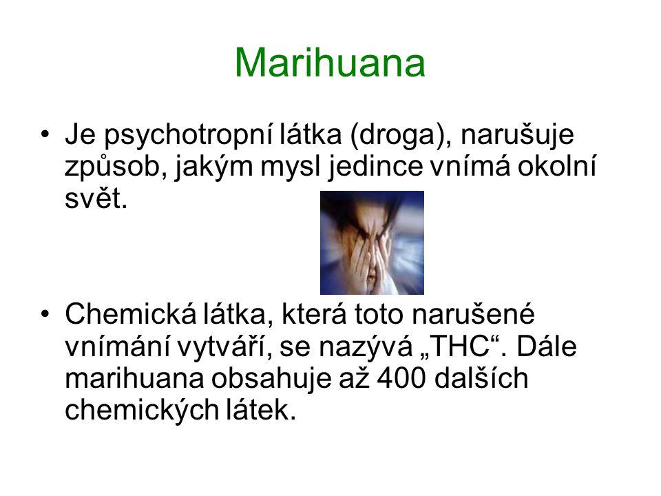 Marihuana Je psychotropní látka (droga), narušuje způsob, jakým mysl jedince vnímá okolní svět.