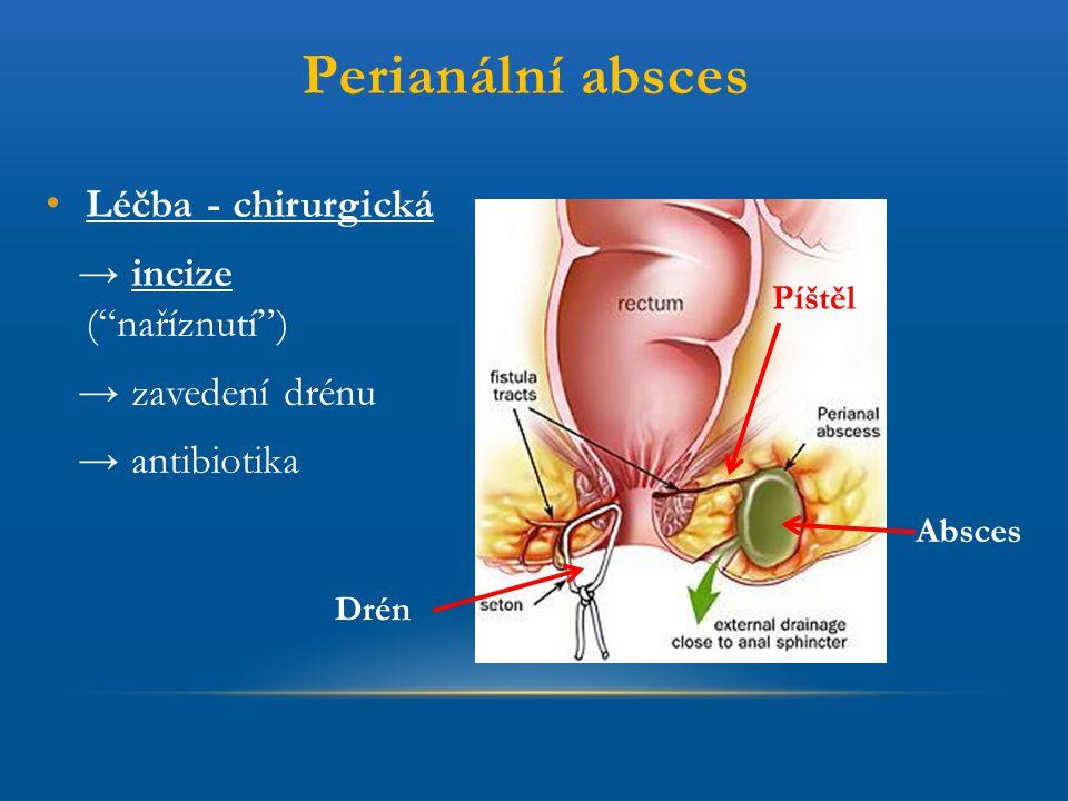 """Perianální absces Léčba - chirurgická → incize (""""naříznutí"""") → zavedení drénu → antibiotika Absces Píštěl Drén"""