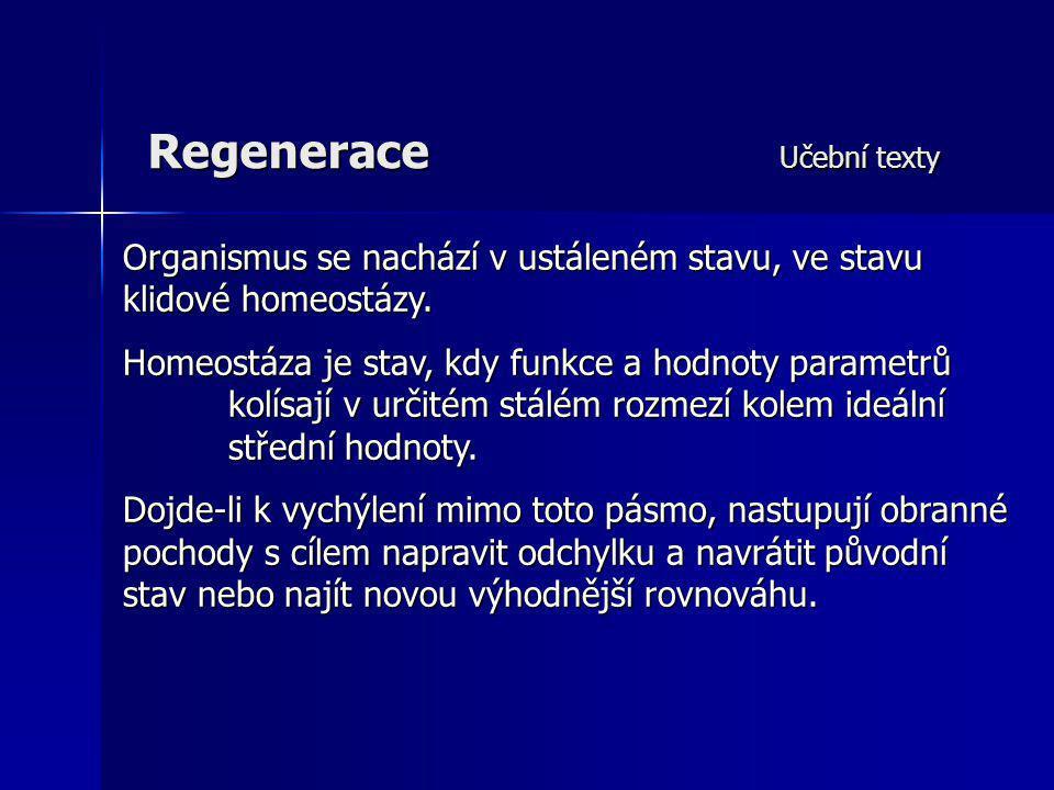Regenerace Učební texty Organismus se nachází v ustáleném stavu, ve stavu klidové homeostázy. Homeostáza je stav, kdy funkce a hodnoty parametrů kolís