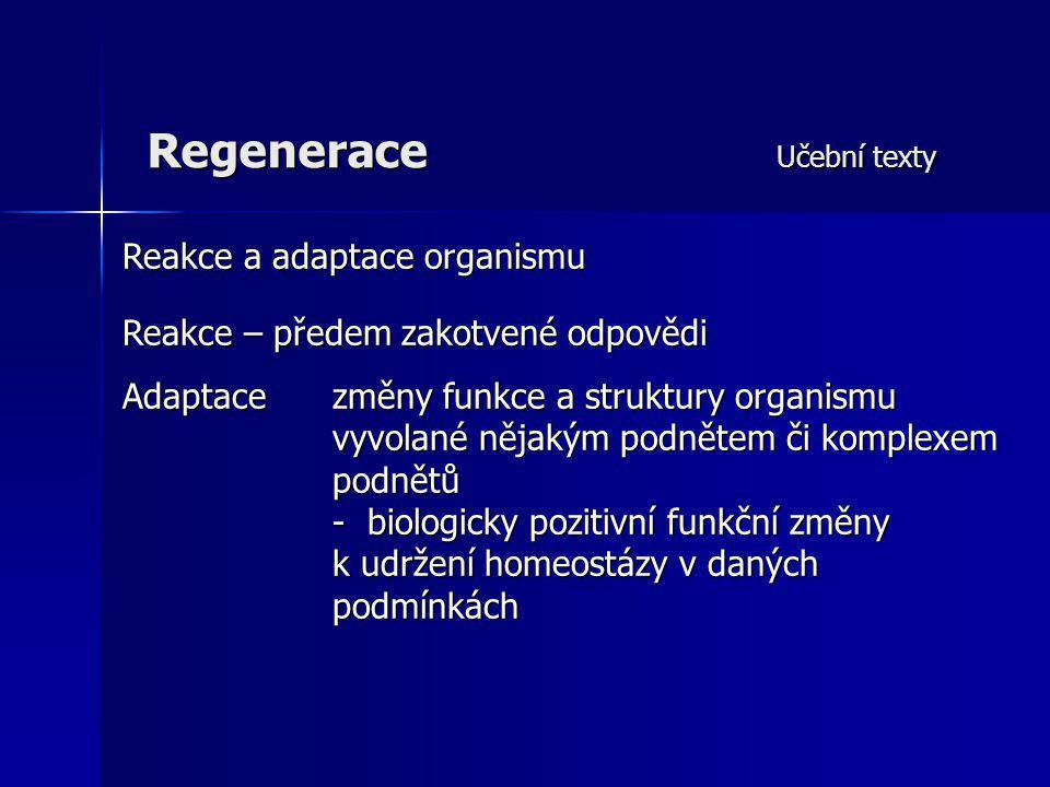Regenerace Učební texty Reakce a adaptace organismu Reakce – předem zakotvené odpovědi Adaptace změny funkce a struktury organismu vyvolané nějakým po