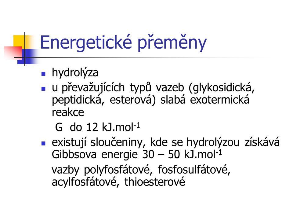 Energetické přeměny hydrolýza u převažujících typů vazeb (glykosidická, peptidická, esterová) slabá exotermická reakce G do 12 kJ.mol -1 existují slou