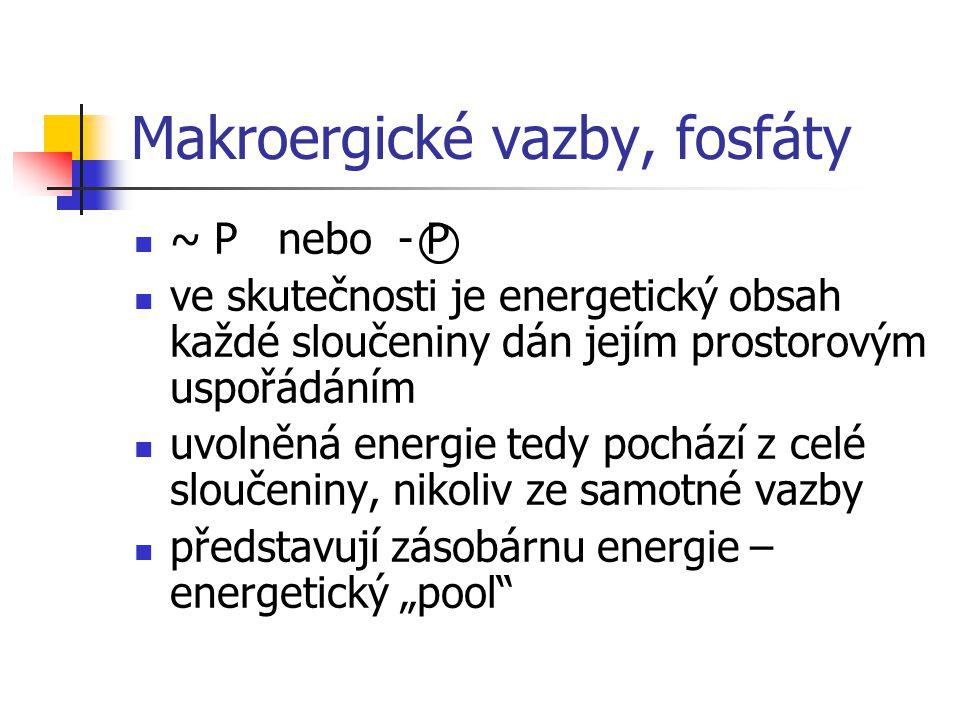 Makroergické vazby, fosfáty ~ P nebo - P ve skutečnosti je energetický obsah každé sloučeniny dán jejím prostorovým uspořádáním uvolněná energie tedy