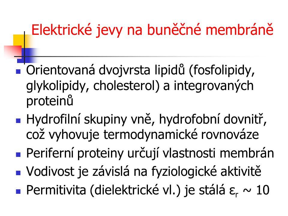 Elektrické jevy na buněčné membráně Orientovaná dvojvrsta lipidů (fosfolipidy, glykolipidy, cholesterol) a integrovaných proteinů Hydrofilní skupiny v