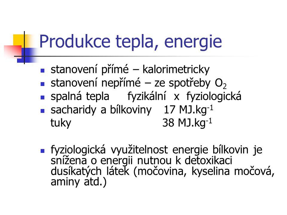 Produkce tepla, energie stanovení přímé – kalorimetricky stanovení nepřímé – ze spotřeby O 2 spalná tepla fyzikální x fyziologická sacharidy a bílkovi