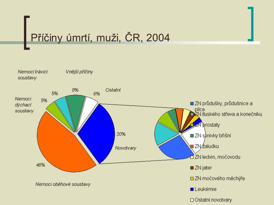 Příčiny úmrtí, muži, ČR, 2004