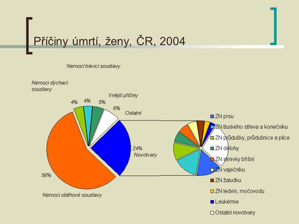 Příčiny úmrtí, ženy, ČR, 2004