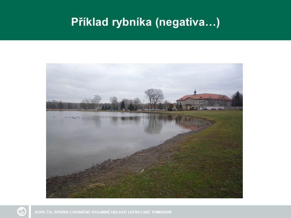 AOPK ČR, SPRÁVA CHRÁNĚNÉ KRAJINNÉ OBLASTI LITOVELSKÉ POMORAVÍ Příklad rybníka (negativa…)