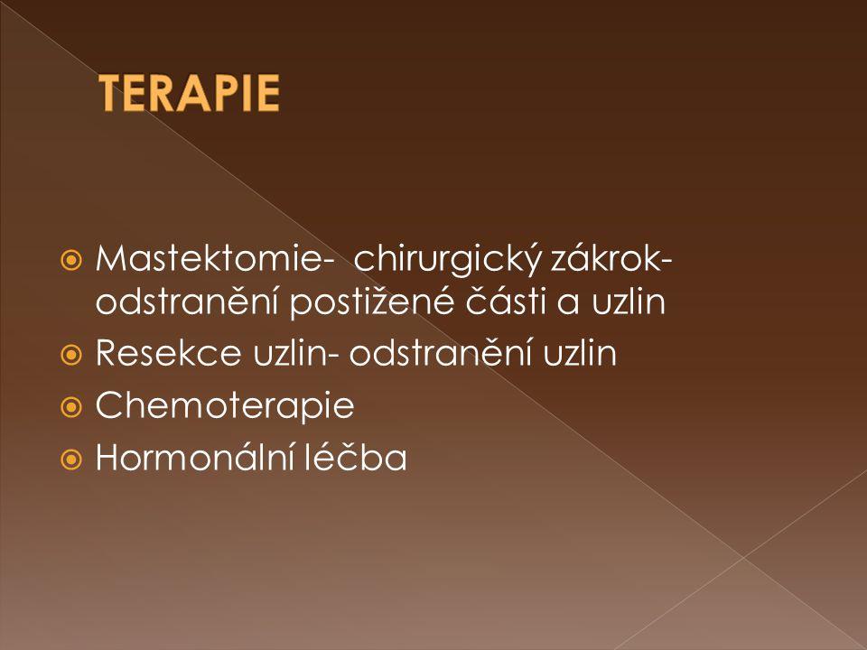  Mastektomie- chirurgický zákrok- odstranění postižené části a uzlin  Resekce uzlin- odstranění uzlin  Chemoterapie  Hormonální léčba