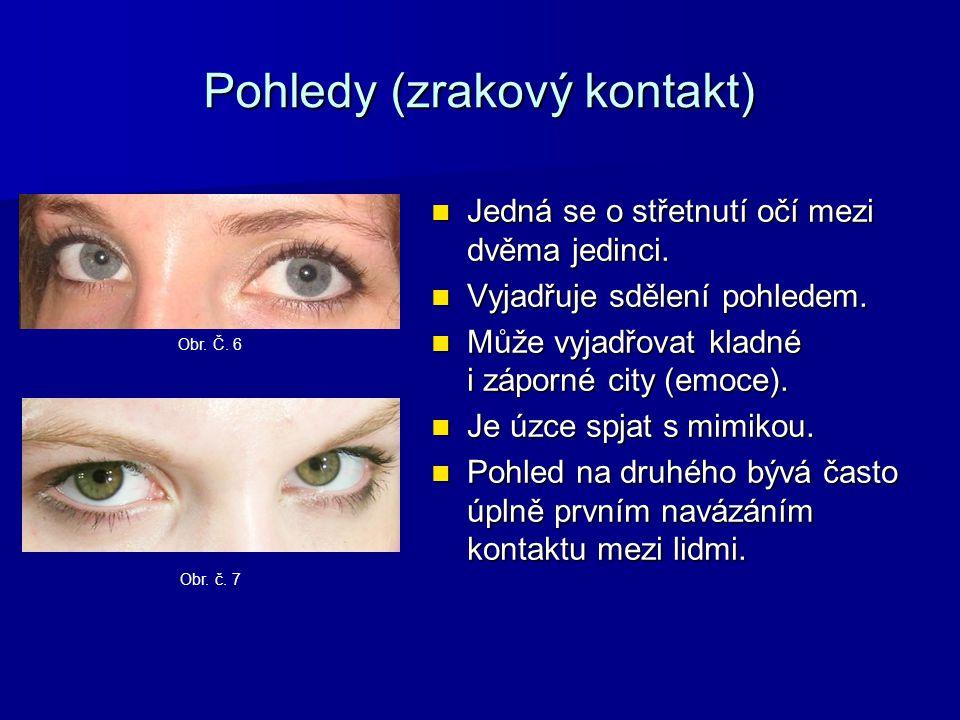 Pohledy (zrakový kontakt) Jedná se o střetnutí očí mezi dvěma jedinci.