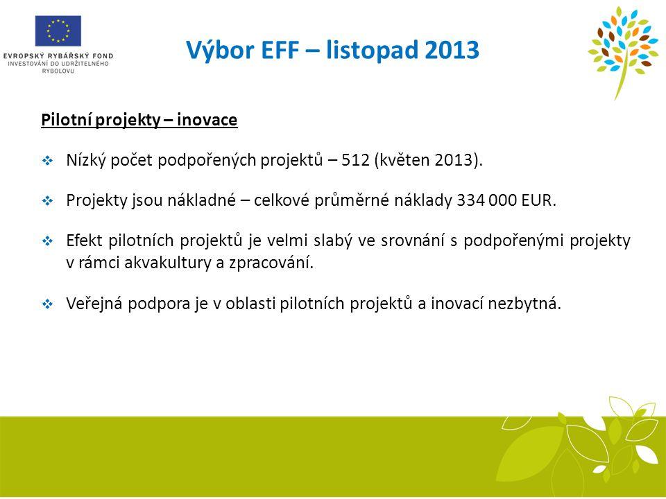 Pilotní projekty – inovace  Nízký počet podpořených projektů – 512 (květen 2013).  Projekty jsou nákladné – celkové průměrné náklady 334 000 EUR. 