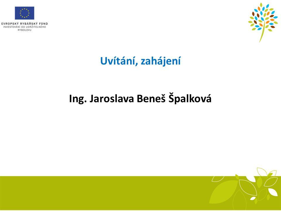 Uvítání, zahájení Ing. Jaroslava Beneš Špalková