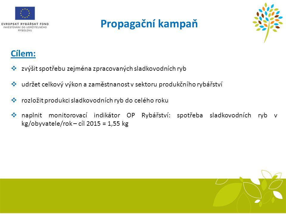 Propagační kampaň Cílem:  zvýšit spotřebu zejména zpracovaných sladkovodních ryb  udržet celkový výkon a zaměstnanost v sektoru produkčního rybářstv
