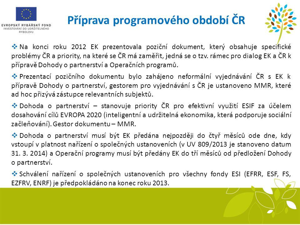 Příprava programového období ČR  Na konci roku 2012 EK prezentovala poziční dokument, který obsahuje specifické problémy ČR a priority, na které se Č