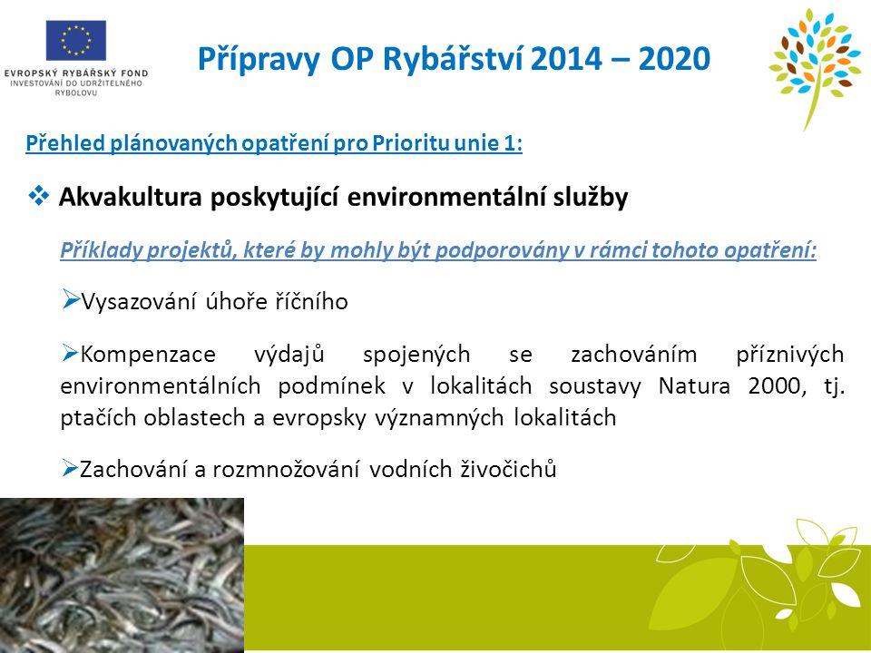 Přípravy OP Rybářství 2014 – 2020 Přehled plánovaných opatření pro Prioritu unie 1:  Akvakultura poskytující environmentální služby Příklady projektů