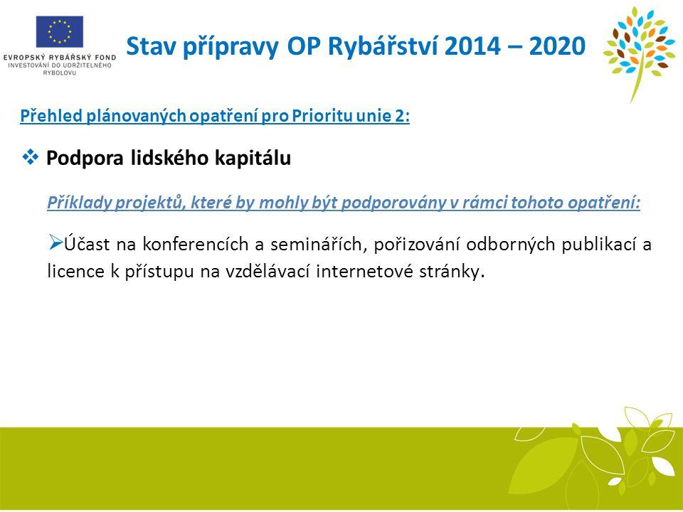 Stav přípravy OP Rybářství 2014 – 2020 Přehled plánovaných opatření pro Prioritu unie 2:  Podpora lidského kapitálu Příklady projektů, které by mohly