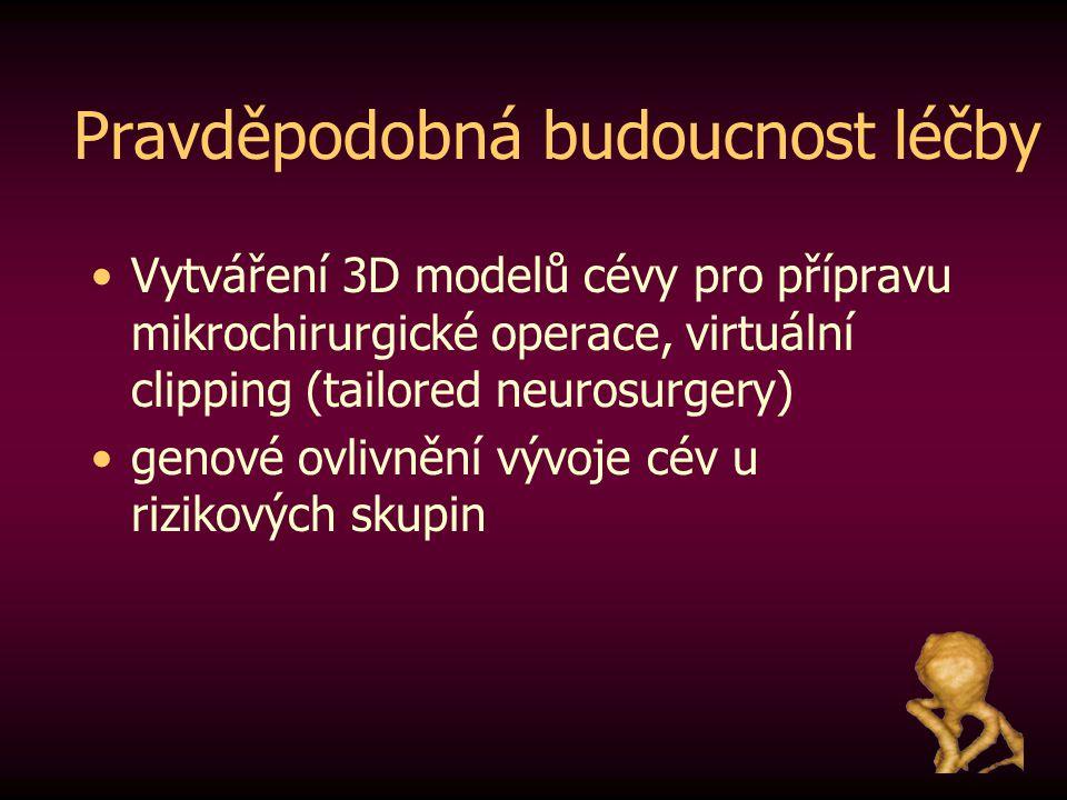 Pravděpodobná budoucnost léčby Vytváření 3D modelů cévy pro přípravu mikrochirurgické operace, virtuální clipping (tailored neurosurgery) genové ovliv