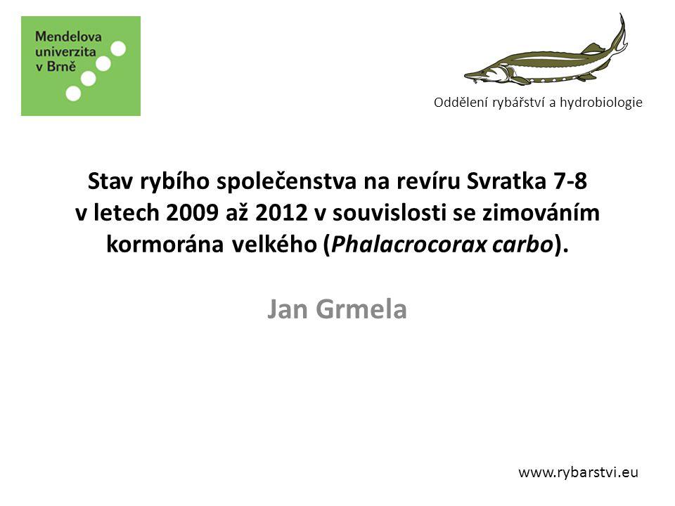 Svratka 7-8 Sekundární pstruhové pásmo Revír Pstruhový - MO MRS Tišnov 20,8 km – 40 ha Kormorán od 2009/10 (100ks) 2010/11 (150 ks)