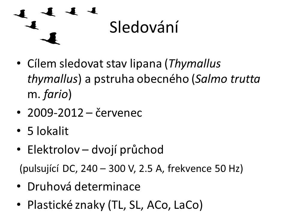 Sledování Cílem sledovat stav lipana (Thymallus thymallus) a pstruha obecného (Salmo trutta m. fario) 2009-2012 – červenec 5 lokalit Elektrolov – dvoj