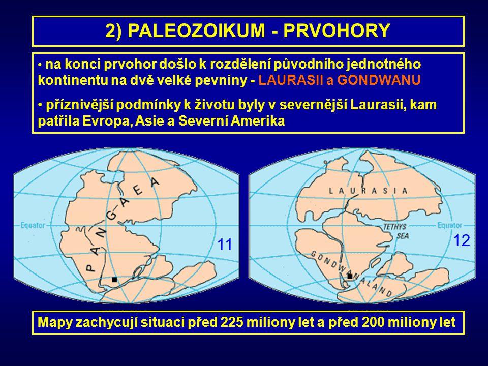 2) PALEOZOIKUM - PRVOHORY na konci prvohor došlo k rozdělení původního jednotného kontinentu na dvě velké pevniny - LAURASII a GONDWANU příznivější po