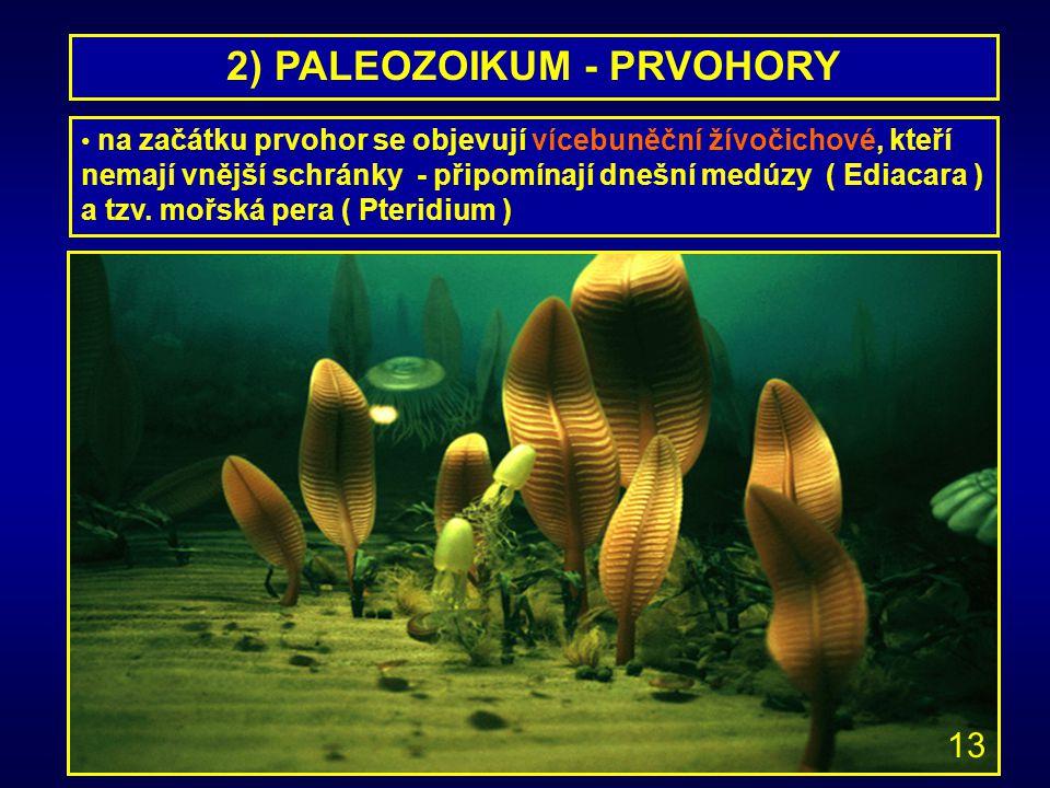2) PALEOZOIKUM - PRVOHORY na začátku prvohor se objevují vícebuněční žívočichové, kteří nemají vnější schránky - připomínají dnešní medúzy ( Ediacara