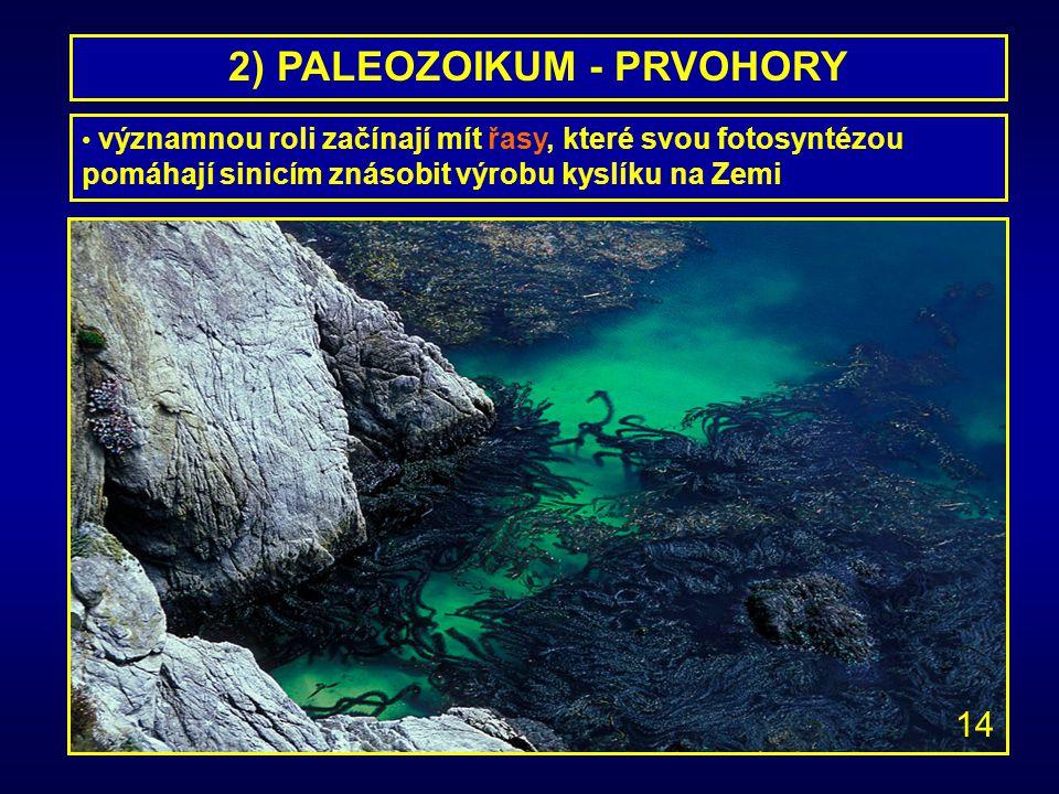 2) PALEOZOIKUM - PRVOHORY významnou roli začínají mít řasy, které svou fotosyntézou pomáhají sinicím znásobit výrobu kyslíku na Zemi 14