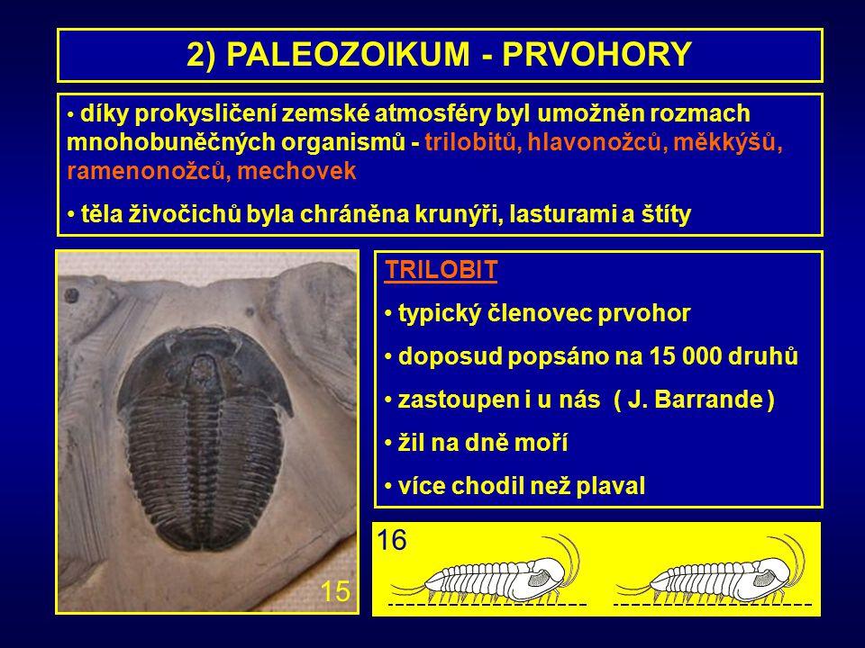 2) PALEOZOIKUM - PRVOHORY díky prokysličení zemské atmosféry byl umožněn rozmach mnohobuněčných organismů - trilobitů, hlavonožců, měkkýšů, ramenonožc