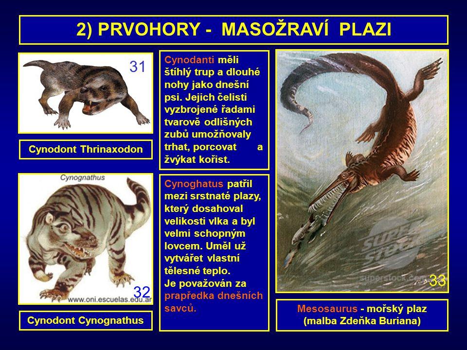 2) PRVOHORY - MASOŽRAVÍ PLAZI Mesosaurus - mořský plaz (malba Zdeňka Buriana) Cynoghatus patřil mezi srstnaté plazy, který dosahoval velikosti vlka a