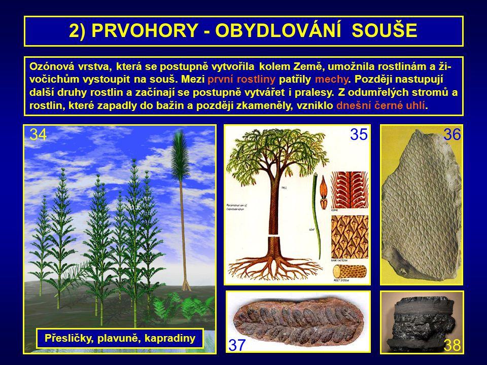 2) PRVOHORY - OBYDLOVÁNÍ SOUŠE Ozónová vrstva, která se postupně vytvořila kolem Země, umožnila rostlinám a ži- vočichům vystoupit na souš. Mezi první