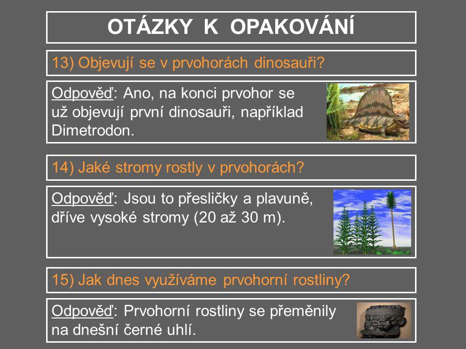 OTÁZKY K OPAKOVÁNÍ 13) Objevují se v prvohorách dinosauři? Odpověď: Ano, na konci prvohor se už objevují první dinosauři, například Dimetrodon. 14) Ja