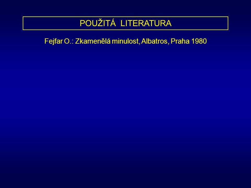 POUŽITÁ LITERATURA Fejfar O.: Zkamenělá minulost, Albatros, Praha 1980