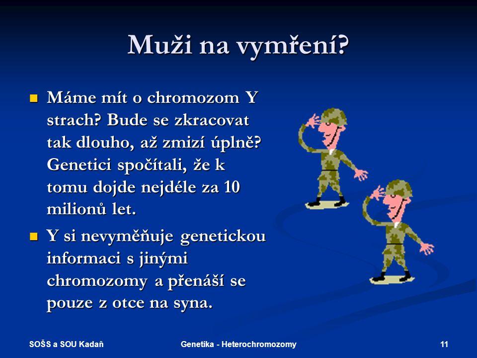 SOŠS a SOU Kadaň 11Genetika - Heterochromozomy Muži na vymření? Máme mít o chromozom Y strach? Bude se zkracovat tak dlouho, až zmizí úplně? Genetici