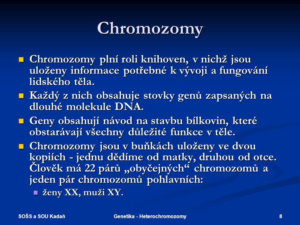 SOŠS a SOU Kadaň 8Genetika - Heterochromozomy Chromozomy Chromozomy plní roli knihoven, v nichž jsou uloženy informace potřebné k vývoji a fungování l