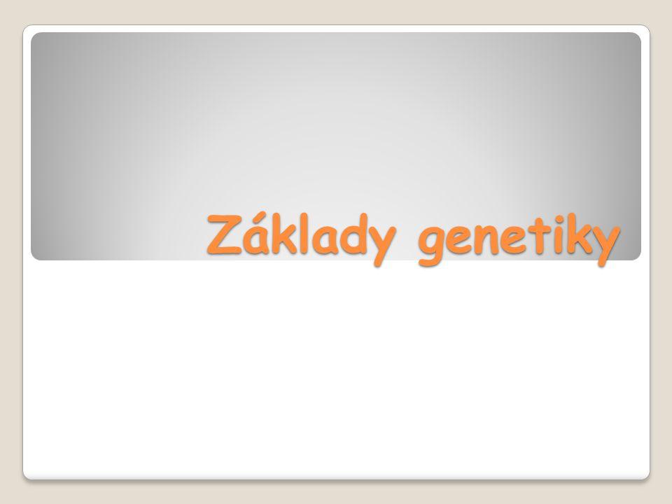 Genetika = věda o dědičnosti a proměnlivosti ( 1865 – vytištěná práce Mendla Dědičnost:  schopnost rodičů předávat potomkům všechny znaky, které určují příslušnost k určitému druhu  schopnost potomstva opakovat vlastnosti rodičů a předchozích generací  přenos genetické informace z rodičů na potomstvo a realizace této informace v určitých podmínkách Proměnlivost : = variabilita individuální Historická Základ evoluční potence druhu
