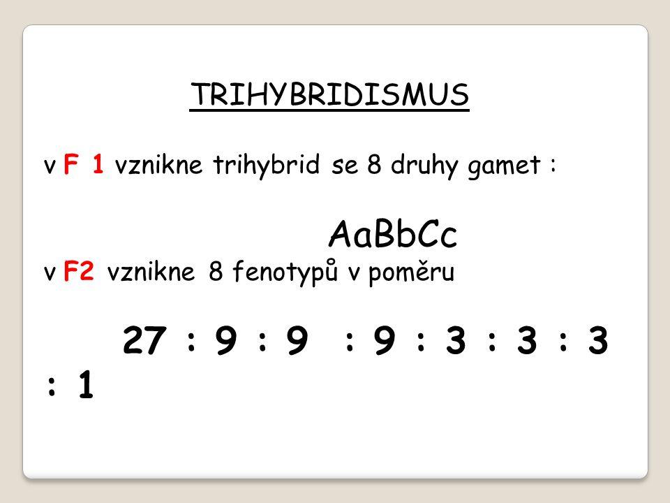 TRIHYBRIDISMUS v F 1 vznikne trihybrid se 8 druhy gamet : AaBbCc v F2 vznikne 8 fenotypů v poměru 27 : 9 : 9 : 9 : 3 : 3 : 3 : 1