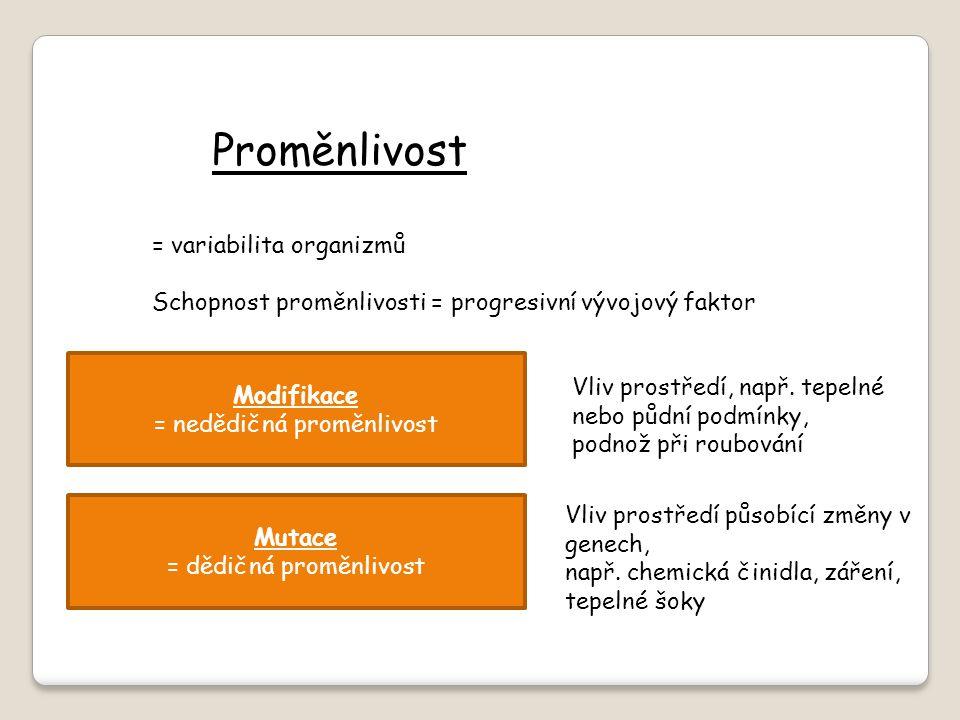 Proměnlivost = variabilita organizmů Schopnost proměnlivosti = progresivní vývojový faktor Modifikace = nedědičná proměnlivost Mutace = dědičná proměn