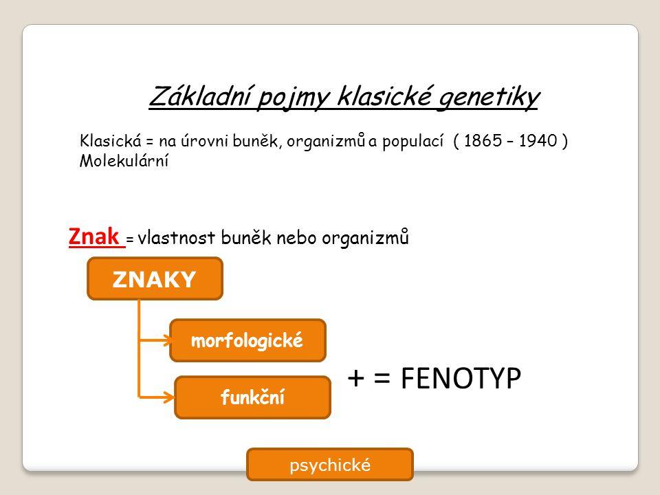 Základní pojmy klasické genetiky Klasická = na úrovni buněk, organizmů a populací ( 1865 – 1940 ) Molekulární Znak = vlastnost buněk nebo organizmů ZN