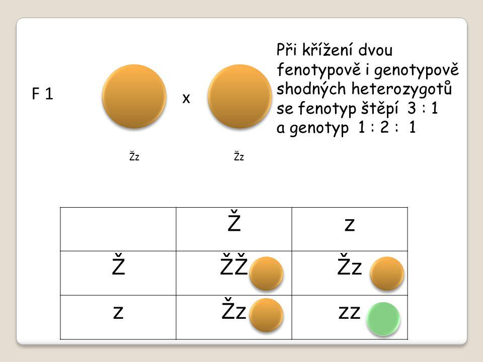 TYPY DOMINANCE Pokud jeden znak převáží = úplná dominance Pokud žádný znak nepřeváží ( oba geny jsou stejně silné ) = neúplná dominance x x