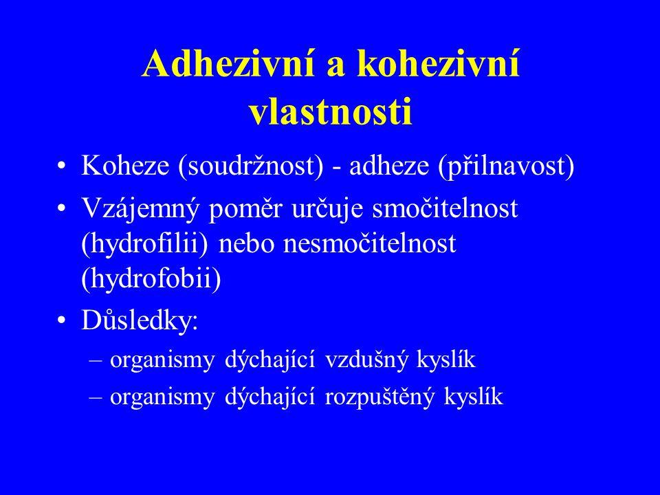 Adhezivní a kohezivní vlastnosti Koheze (soudržnost) - adheze (přilnavost) Vzájemný poměr určuje smočitelnost (hydrofilii) nebo nesmočitelnost (hydrof