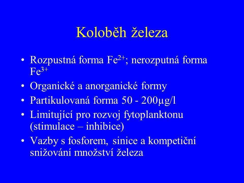 Koloběh železa Rozpustná forma Fe 2+ ; nerozputná forma Fe 3+ Organické a anorganické formy Partikulovaná forma 50 - 200µg/l Limitující pro rozvoj fyt