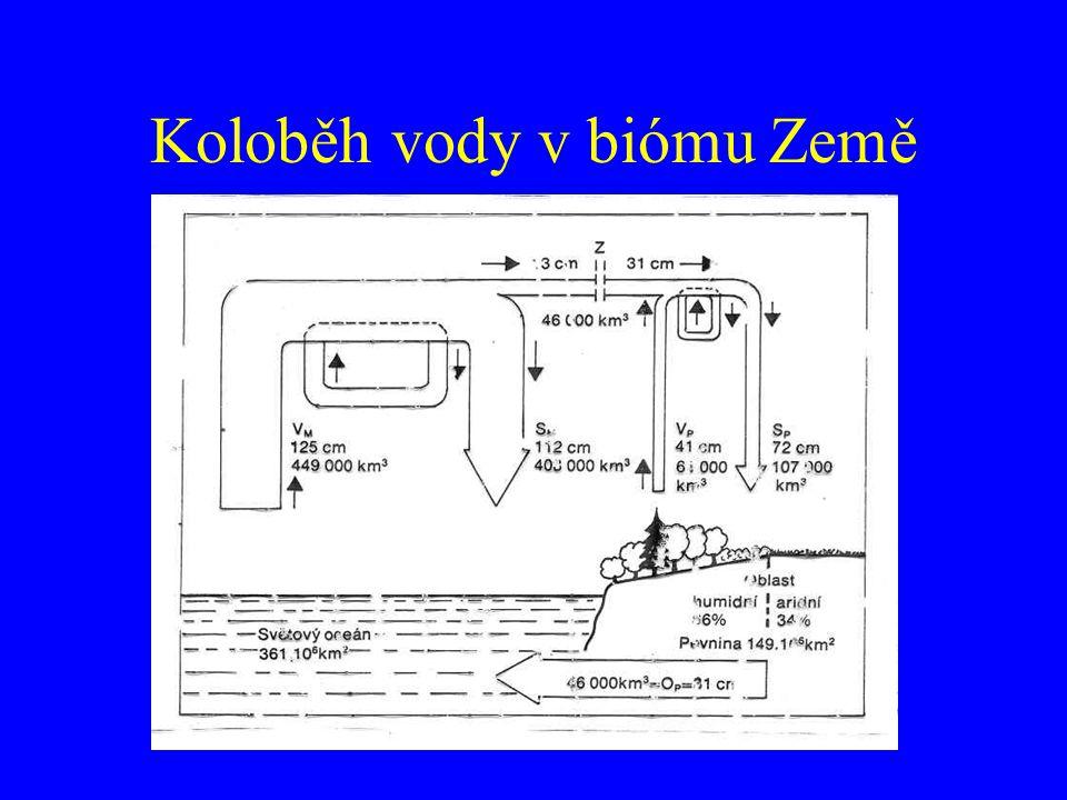 Hustota vody Termická stratifikace Vysoká hustota (775x) – Stavba těl a velikost vodních organismů