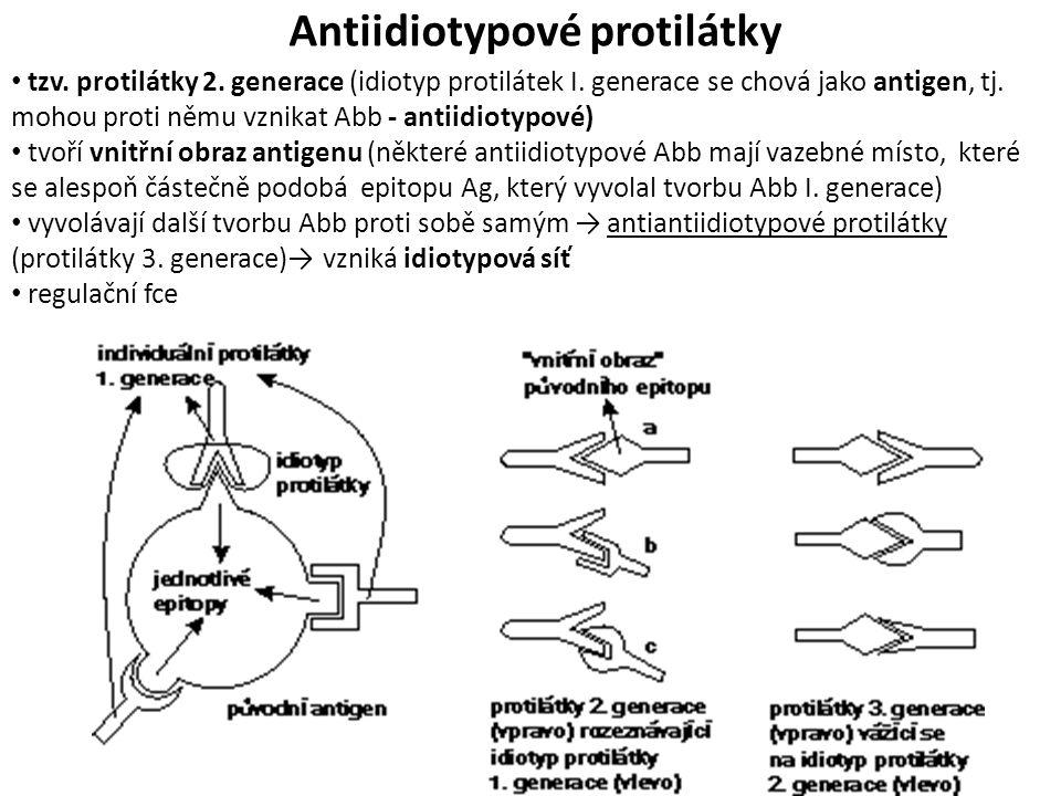 Antiidiotypové protilátky tzv.protilátky 2. generace (idiotyp protilátek I.
