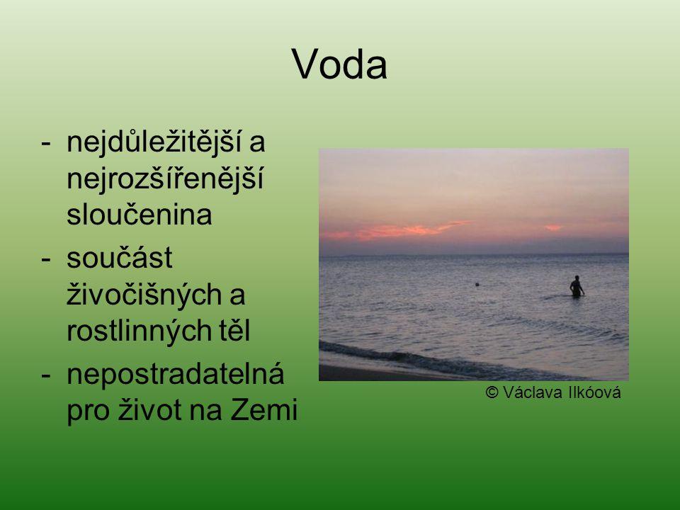 Voda -nejdůležitější a nejrozšířenější sloučenina -součást živočišných a rostlinných těl -nepostradatelná pro život na Zemi © Václava Ilkóová