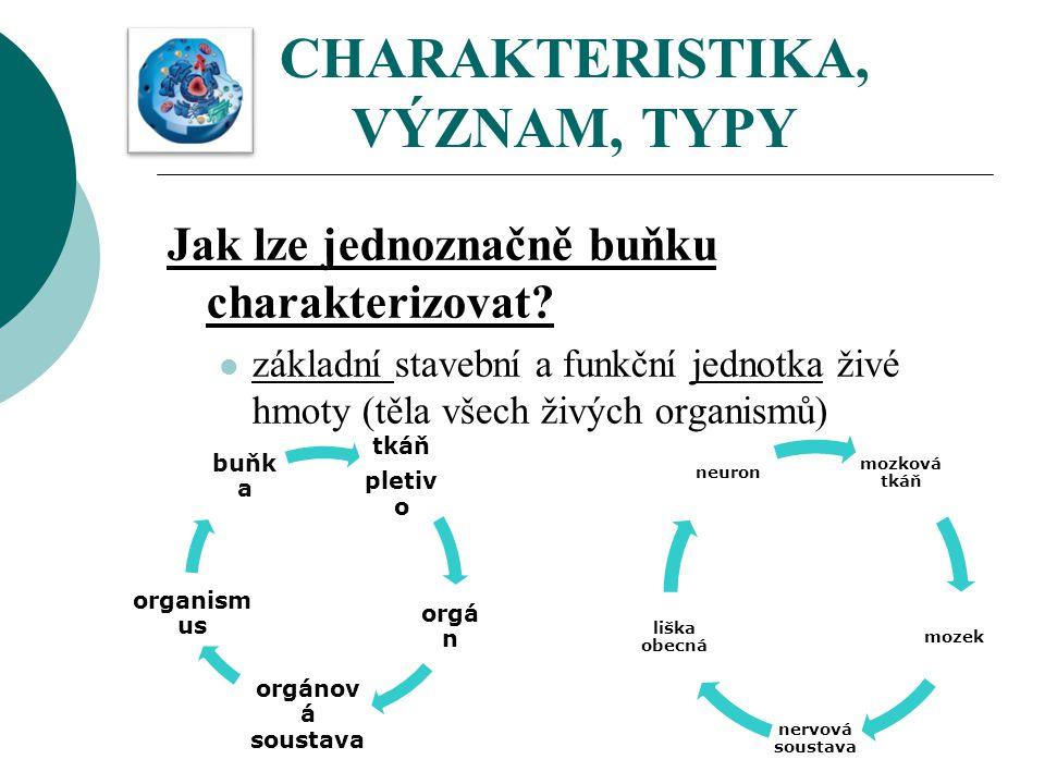CHARAKTERISTIKA, VÝZNAM, TYPY Jak lze jednoznačně buňku charakterizovat? základní stavební a funkční jednotka živé hmoty (těla všech živých organismů)