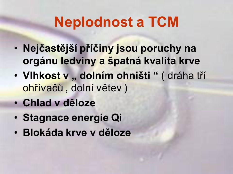 """Neplodnost a TCM Nejčastější příčiny jsou poruchy na orgánu ledviny a špatná kvalita krve Vlhkost v """" dolním ohništi """" ( dráha tří ohřívačů, dolní vět"""