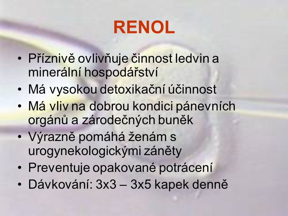 RENOL Příznivě ovlivňuje činnost ledvin a minerální hospodářství Má vysokou detoxikační účinnost Má vliv na dobrou kondici pánevních orgánů a zárodečn
