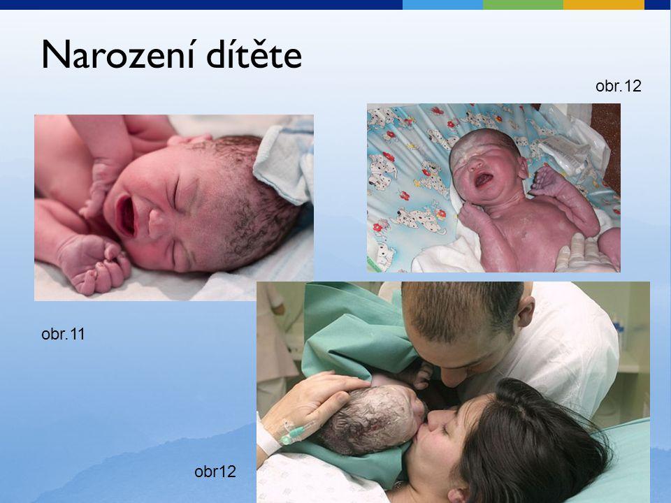 Narození dítěte obr.12 obr12 obr.11