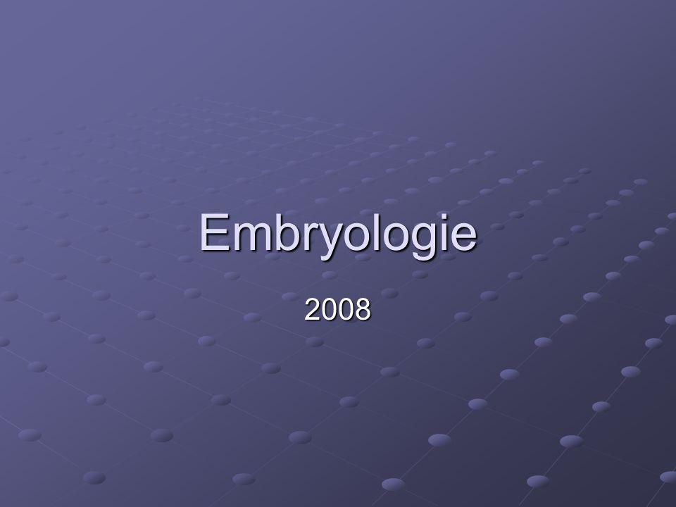 Embryologie 2008