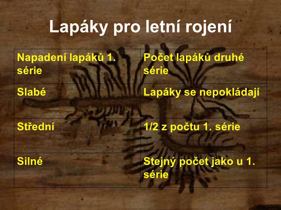 Lapáky pro letní rojení Napadení lapáků 1.